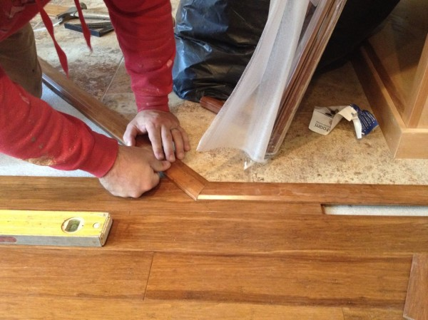 Fitting pieces between living room floor and entranceway tile