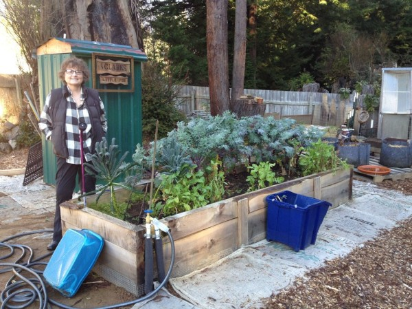 Ma with our winter kale bed