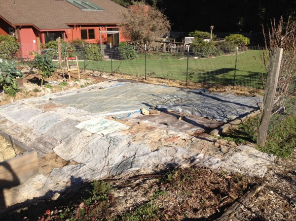 Old lawn covered up to make room for two new dry-farm beds