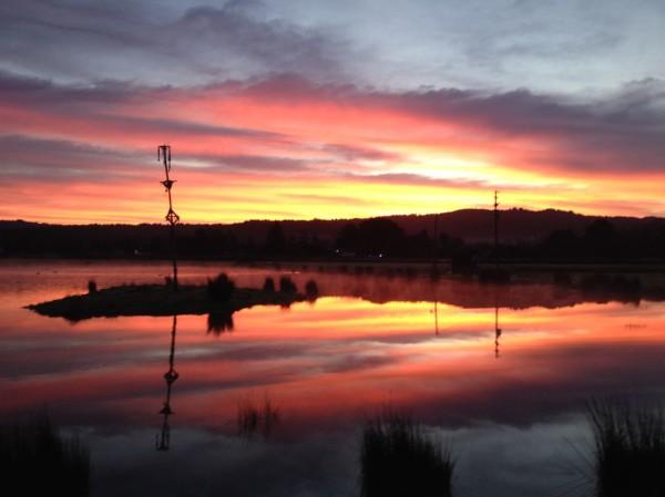 Sunrise at Tule Fog Farm
