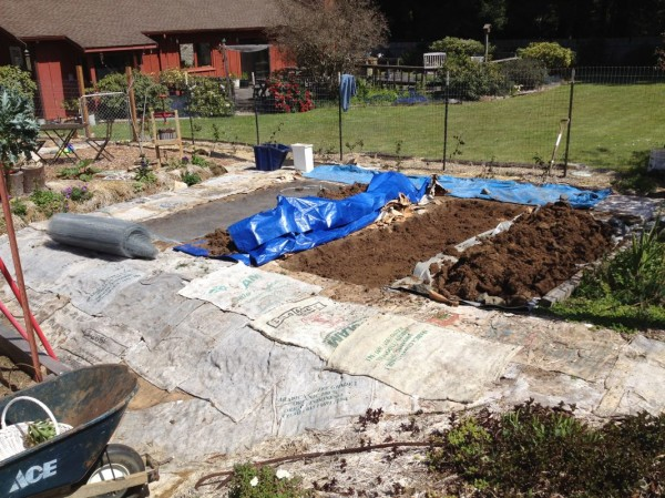 New dry farming beds