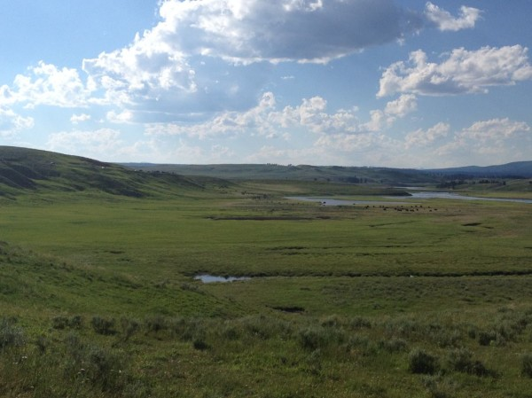 The Yellowstone River Valley