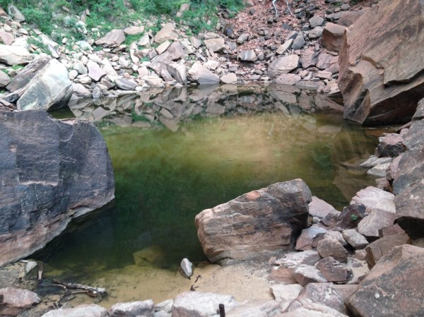 Zion National Park's Upper Emerald Pool