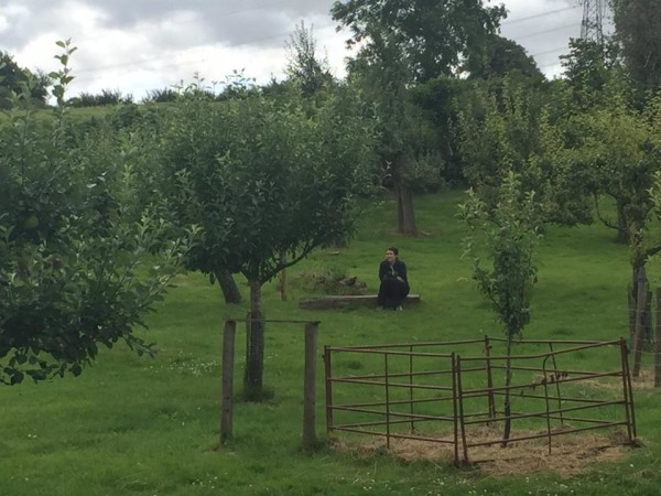 Jessie takes a break in the peaceful orchard