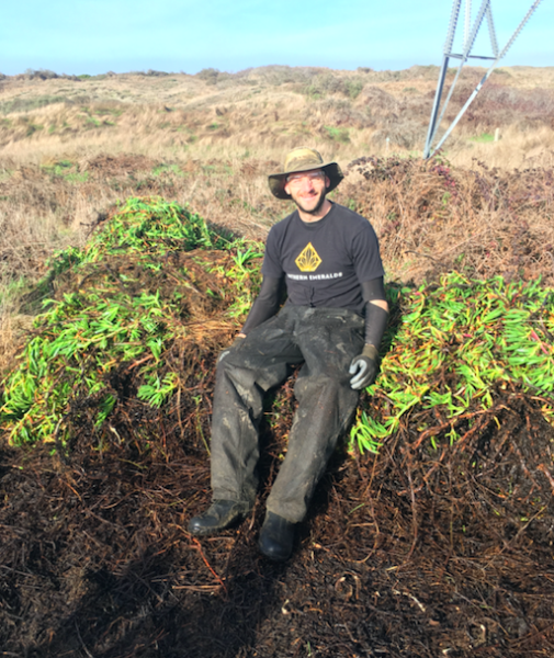 Me atop a pile of vanquished ice plant––an invasive species